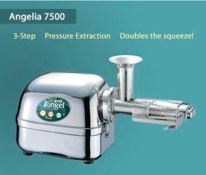 angelia02